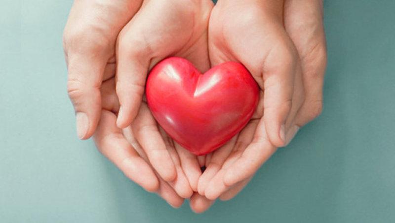 imagen de Servicio de Hemoterapia: Información para el donante